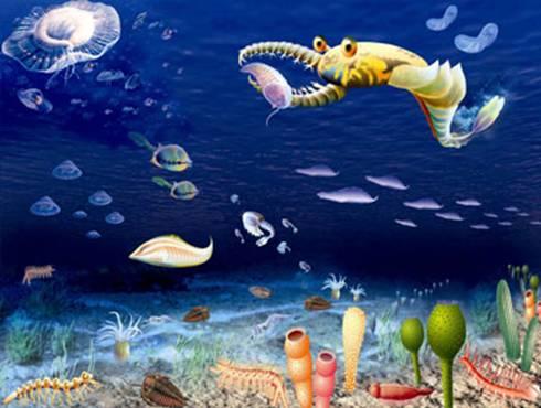 壁纸 海底 海底世界 海洋馆 水族馆 桌面 490_370